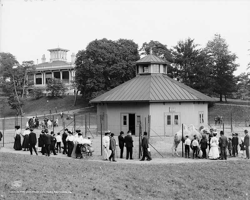 Druid Hill Park Zoo (c. 1906)