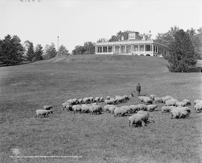 South Terrace and Mansion (c.1906)