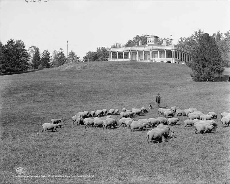 Druid Hill Park (c. 1906)