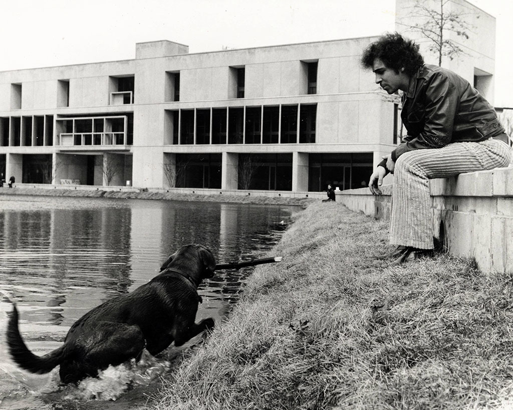 Retriever swimming in the Library Lake
